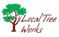 Local Tree Works Logo